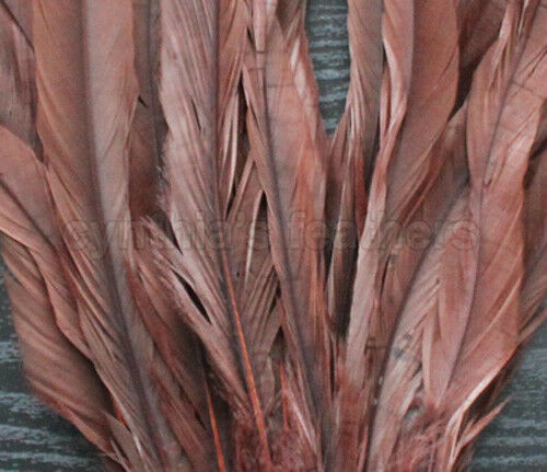 """25 pcs 10-12/"""" long Chocolate Brown Dyed Rooster COQUE tail Feathers for crafting"""