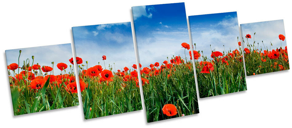 Poppy Poppy Poppy Meadow floreale fiori Multi Canvas Wall Art Box CORNICE STAMPA 466d9f