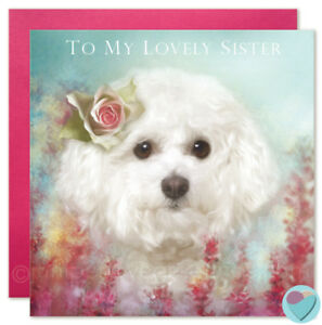 Auntie Birthday Card FABULOUS AUNTIE to or from Bichon Frise dog puppy lover Home, Furniture & DIY Celebrations & Occasions