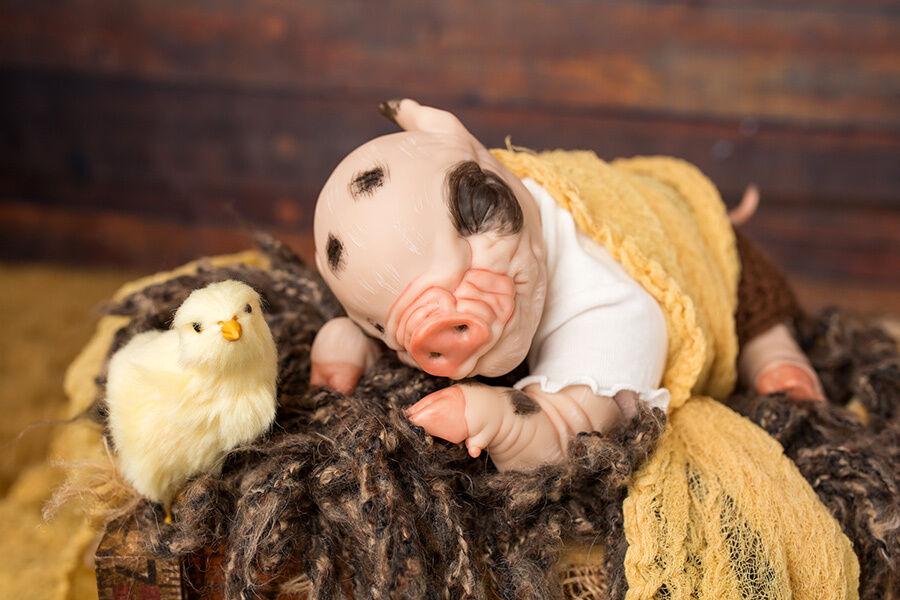 Bebé Reborn lechón  pétalos  elegir Niño O Niña Hecho A Pedido.