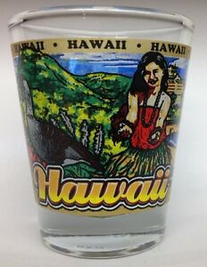 HAWAII STATE SHOT GLASS NEW