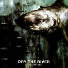 Shallow Bed by Dry the River (CD, Apr-2012, Red Ink)