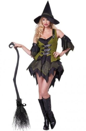 Bewitching Babe Halloween Witch Costume