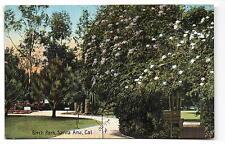 Santa Ana CA Birch Park Postcard circa1910