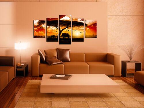 ELEPHANT Canvas Print  Framed Wall Art Picure Photo Image 0051378