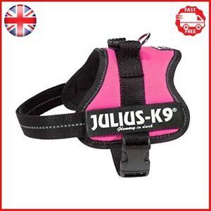 Julius-K9-162DPN-MM-K9-PowerHarness-for-Dogs-Size-Mini-Mini-Dark-Pink