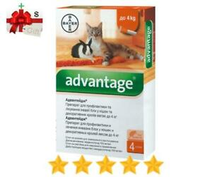 Bayer-Advantage-Flea-Control-for-Cats-amp-Kittens-Under-4-kg-9-lbs-4-Tubes