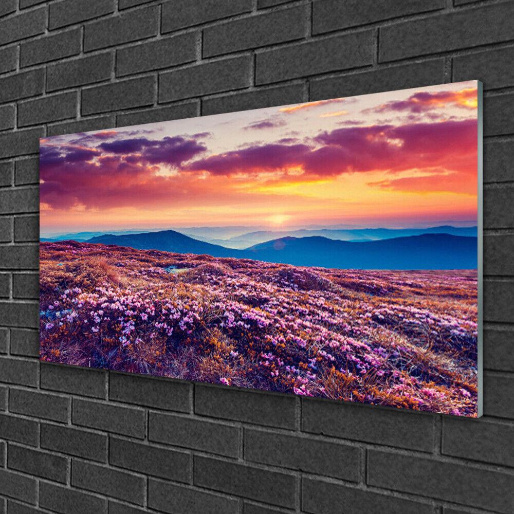 Acrylique Print Wall Art Image 100x50 Photo Meadow Montagne Fleurs Nature