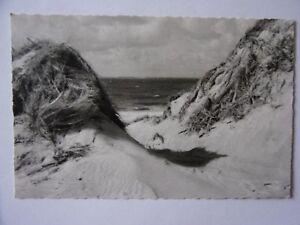 Ansichtskarte-Insel-Amrum-Duenen-und-Meer-Blick-auf-Sylt-1959-Nr-672