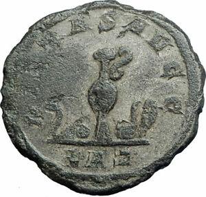 CARINUS-as-CAESAR-Authentic-Ancient-282AD-Rome-Genuine-Roman-Coin-i79361