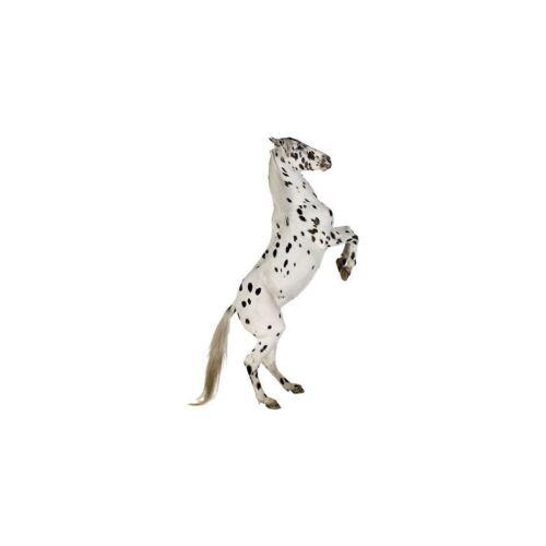 Sticker animal Cheval réf 025