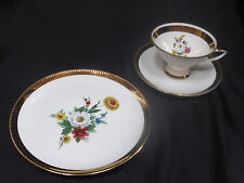 Sammelgedeck/kaffeegedeck, Winterling röslau bavaria, flores decoración, borde de oro