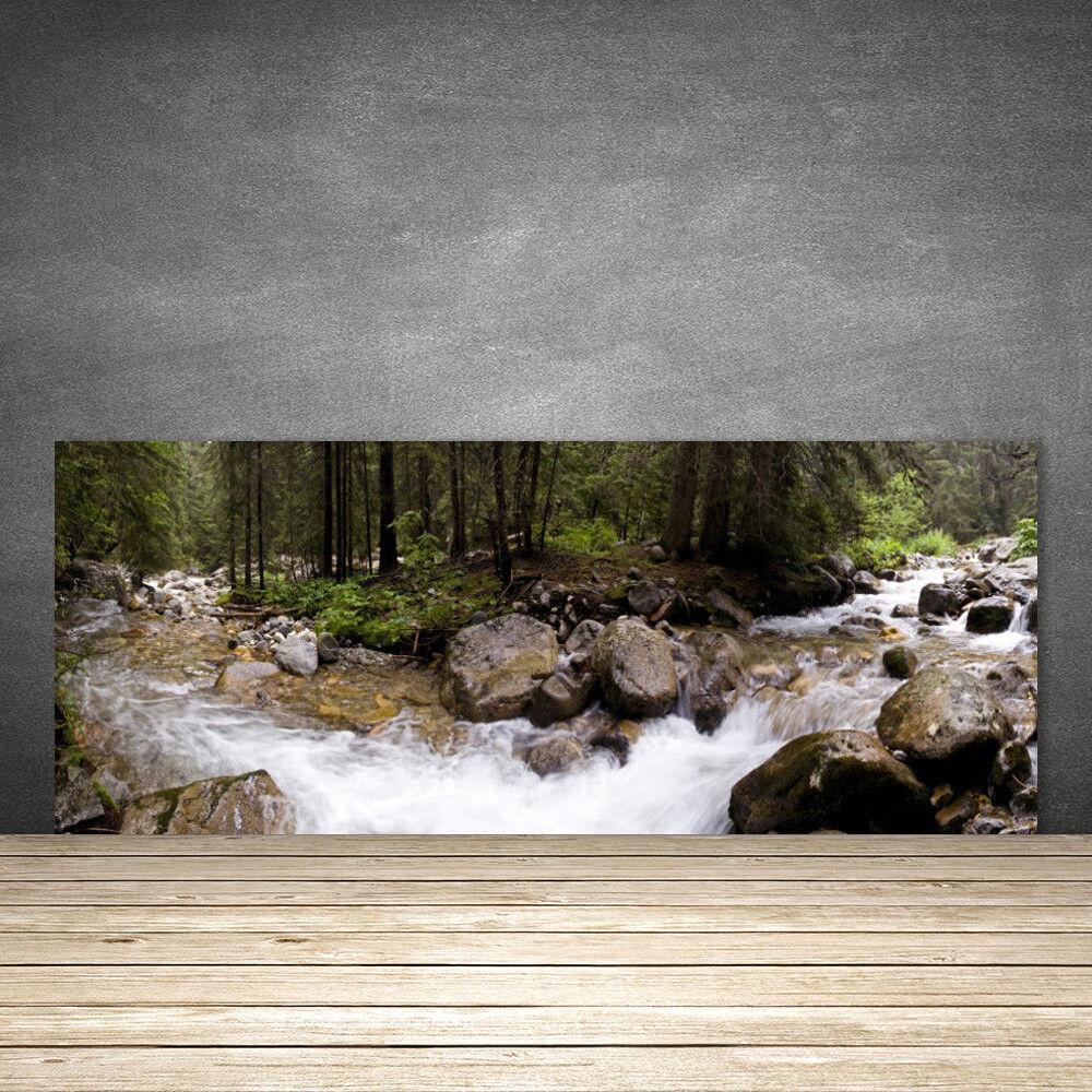 Crédence de cuisine en verre Panneau 125x50 Nature Forêt Ruisseau