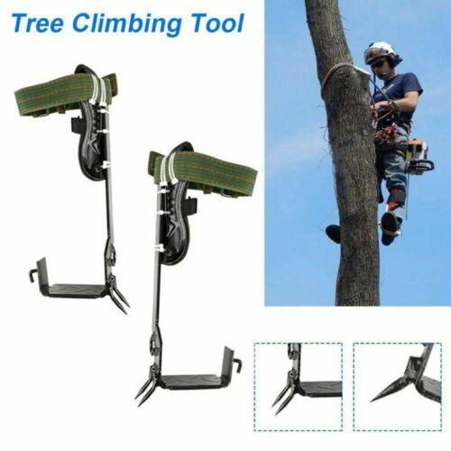 Profi Forst Steigeisen Kletterhilfe Baumsteigeisen Baumpflege mit 2 Hacken DHL