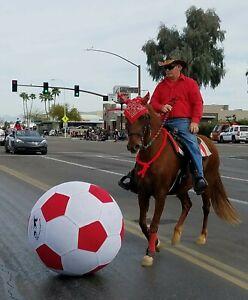 HorsePlay-034-Big-Boy-48-034-Soccer-and-Training-Balls