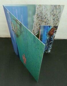 SJ-Malaysia-Islands-amp-Beaches-III-2015-Coral-Reef-Sea-Sunset-Fish-folder