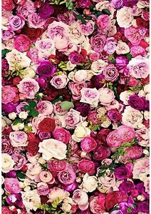 Pink Rose Flower Floral Wallpaper A4 Sized Edible Wafer Paper