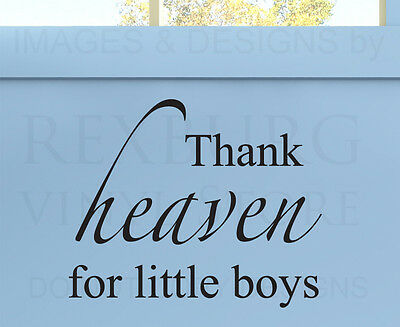 Wall Quote Decal Sticker Vinyl Art Thank Heaven for Little Boys Girl's Room K74