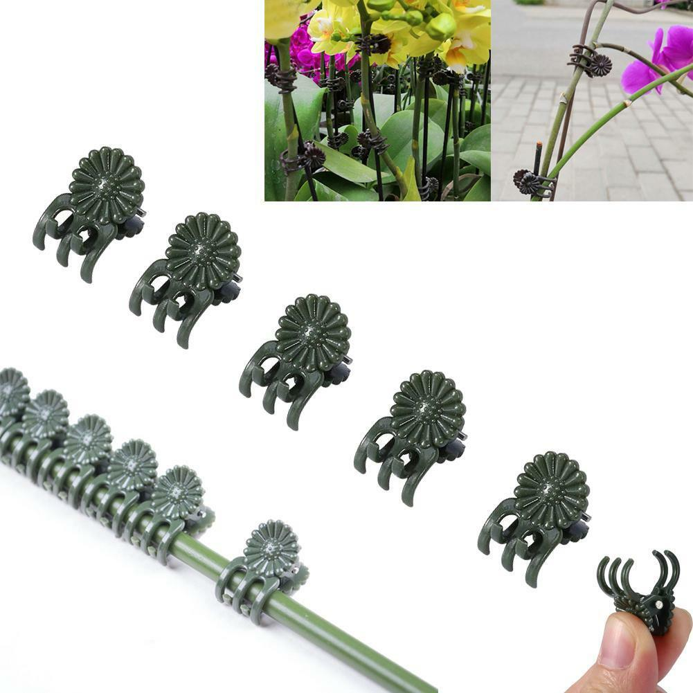 50Pcs Plant Support Garden Flower Orchid Clips Vines Grow Upright Clip Set New