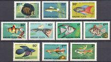 Hungary 1962 Tropical Fish/Ornamental/Aquaria/Discus/Tetra/Nature 10v set n39864