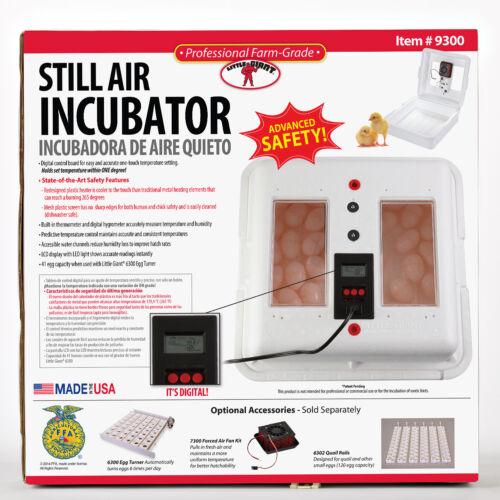 LITTLE GIANT STILL AIR INCUBATOR w//DIGITAL DISPLAY Durable Styrofoam Hold 41eggs