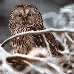 SERVIETTES-EN-PAPIER-HIBOUX-CHOUETTE-OISEAU-GEANTE-PAPER-NAPKINS-OWL-BIRD-GIANT