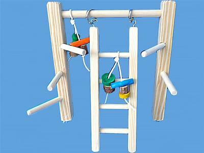 Other Bird Supplies Competent Bird Play Gym For Cockatiels,conures,senegals,etc.-bird Toy,play Stand Cage Top Superior Performance