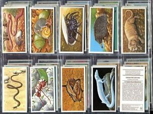 Trade-Card-Set-Brooke-Bond-Tea-INCREDIBLE-CREATURES-Wild-Animal-Walton