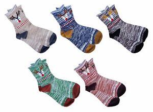 CHEX Socks Ladies Womens Cute Pig Bear Dog Fun Novelty Ankle Socks UK 2-5