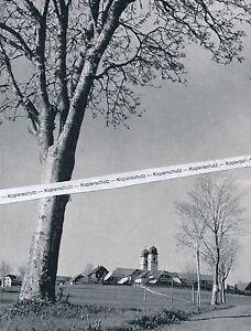 St. Märgen im Schwarzwald - Chorherrenstift - um 1935 - selten  - N 14-3