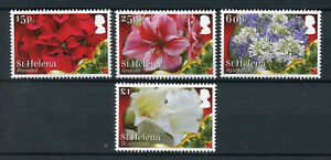 ST-HELENA-2017-neuf-sans-charniere-Noel-Poinsettia-Amaryllis-Lily-4-V-Set-Fleurs-timbres