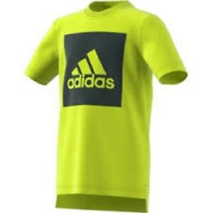 6e9ac26d2 Image is loading boys-adidas-t-shirt-Essentials-logo-performance-tee-
