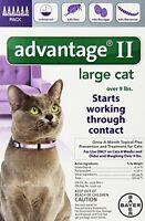 Cat Kitten Flea Control Pet Supplies 6-doses Pet Care Kill Flea Population Treat on sale