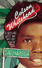 Sag Harbor by Colson Whitehead (Paperback, 2009)