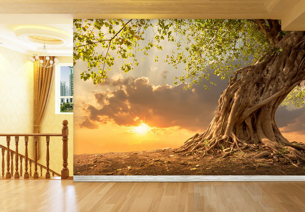 3D Sunset Cloud Tree 8 Wall Paper Murals Wall Print Wall Wallpaper Mural AU Kyra