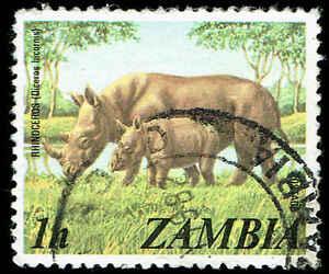 """Scott # 135 - 1975 - """"rhinocéros Et Veau""""-afficher Le Titre D'origine"""