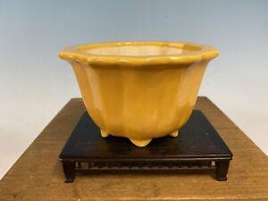 Yellow-Glazed-Shohin-Size-Tokoname-Bonsai-Tree-Pot-Koyo-5-5-8-By-3-1-4