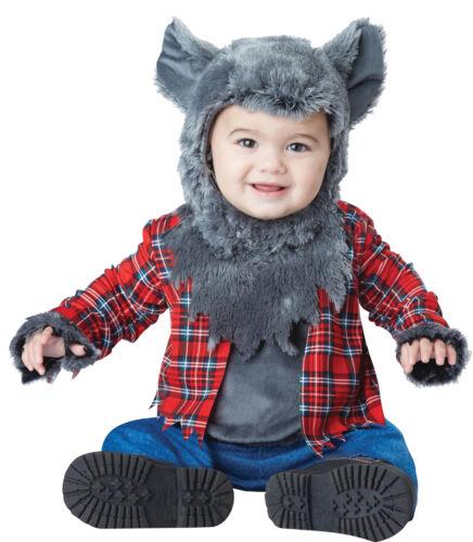 Wittle Werewolf Toddler Costume Wolf Grey Halloween  California Costumes