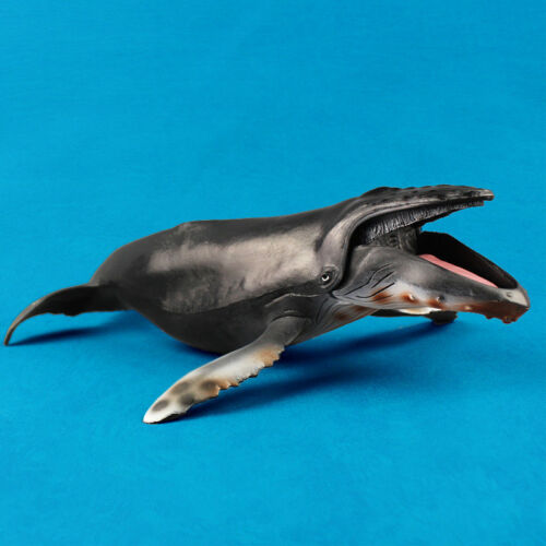 Humpback Whale Action Model Ocean Animal Vivid Figure Collector Decor Toy Gift
