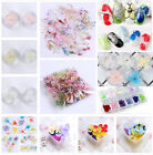 1 Box 3D Nail Art Glass Bottle Decoration Dried Pretty Preserved Flower Manicure
