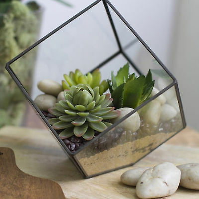 Terrarium in Glass Mini Hanging Garden Real-like Plant Pot Home Decor 12cm x12cm