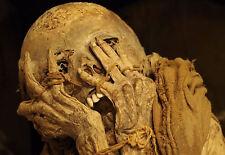 Incorniciato stampa-MUMMIFIED resti umani (Picture Gotico Morte MUMMIA HORROR ART)