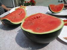 """Wassermelone Black Diamond 6 exotische Samen """"ALLES NUR 1 EURO"""""""