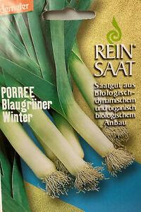 Porree Blaugrüner Winter - Saatgut - Samen  - Demeter - aus biologischem Anbau