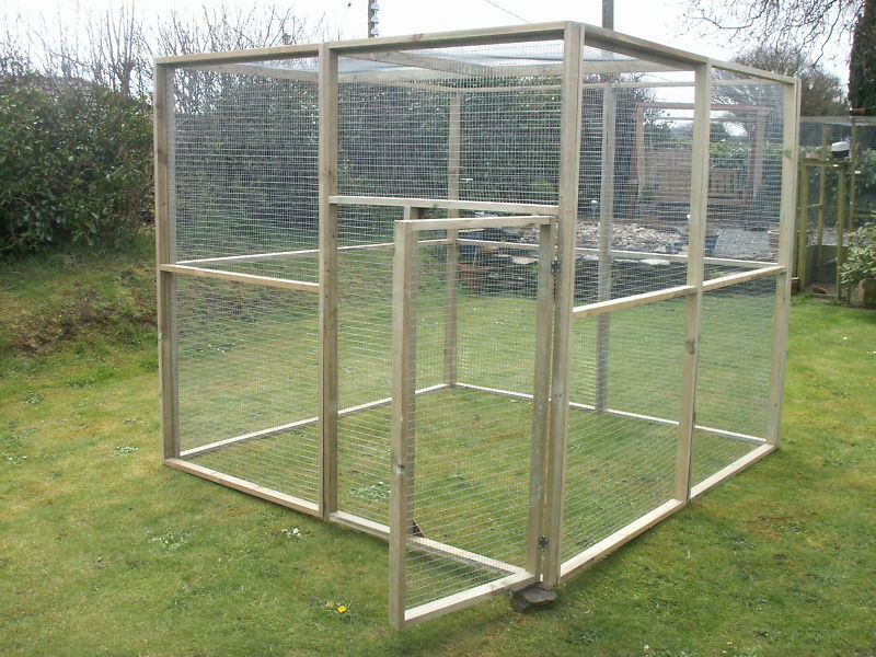 Aviary 6ft x 6ft (Approx size)