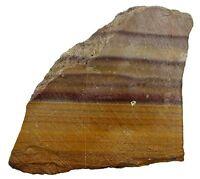 285 Gram Brown Plum Banded Oregon Jasper Slab Cab Cabochon Gemstone Rough Us66