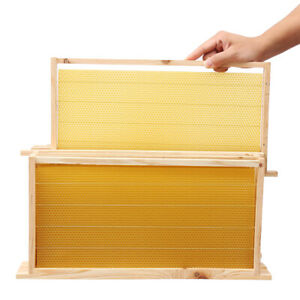20Pcs-Bees-Wax-Foundation-Sheets-Wood-Beekeeping-Pine-Beehive-Frame-19-034-X9-034-AU