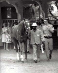 SECRETARIAT-amp-EDDIE-SWEAT-ORIGINAL-1973-8X10-BELMONT-STAKES-HORSE-RACING-PHOTO