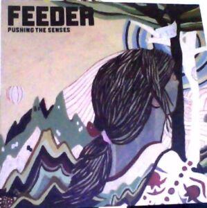 Feeder pushing the senses white vinyl 7034 - Ashbourne, United Kingdom - Feeder pushing the senses white vinyl 7034 - Ashbourne, United Kingdom