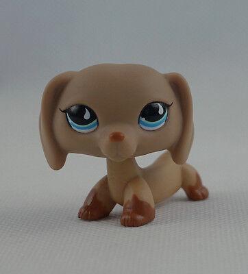 2/'/' Littlest Pet Shop LPS Girl Toys #518 Dachshund Wiener Dog Teardrop Blue Eyes